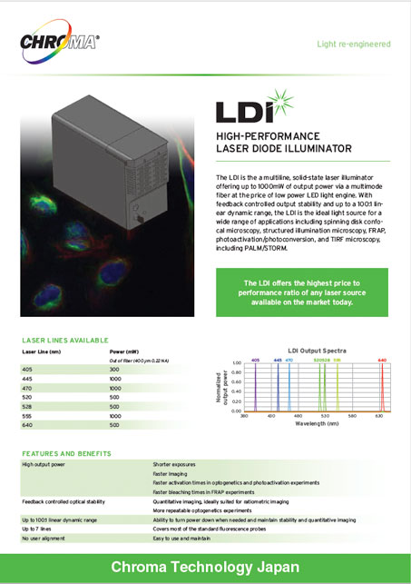 LDI Engineering