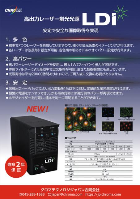 LDI_JP.pdf