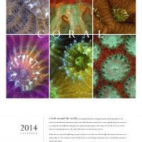 2014 Chroma Calendar: Coral - Cover