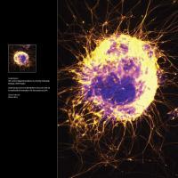 2012 Chroma Calendar - Page 4