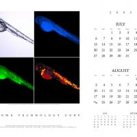 2003 Chroma Calendar - Page 4